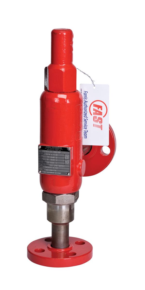 Series 88, 89, 1890, 1896M, 2600, 2700, 2850, 2856, 3800:  Process Pressure Relief Valves